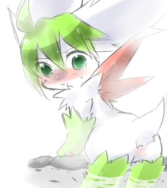 to sky get form oras how shaymin Breath of the wild great fairy tera